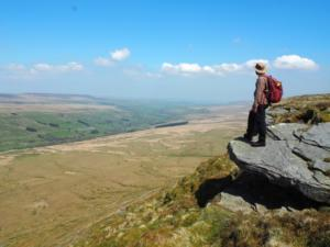 The glorious view of Coverdale from the small crags to the north of the summit