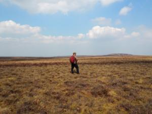 Standing roughly at the highest point of the flat topped Dead Man's Hill