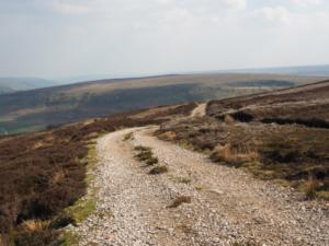 Following the track towards above Woo Gill