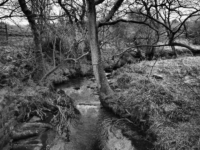 The River Skell