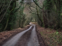 The road dropping down from Eavestone.