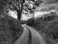 The access road from Hungate to the road by Grantley Hall