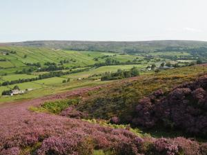A view of Swaledale from Maiden Castle