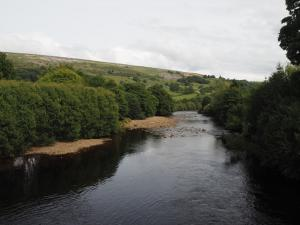 The River Swale from Grinton Bridge