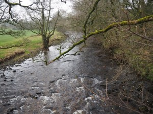 The River Eden below Wharton Hall