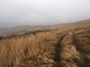 A short section of path on the way to Great Bell
