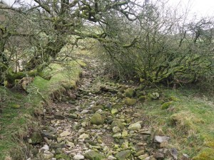 The dry Thringill Beck
