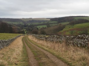 The track leading back down to Skelton Lane