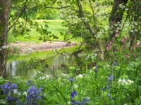 The colourful banks of the River Burn