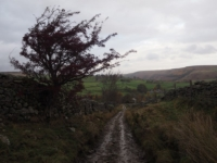 Descending Stean Lane