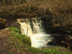 The pretty little waterfall below the footbridge in Whitfield Gill