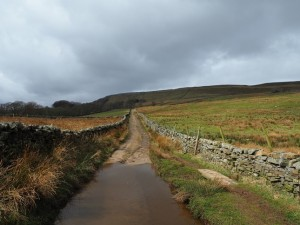 Looking back up Low Straights Lane towards Whitfield Scar