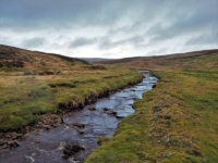 Mossdale Beck