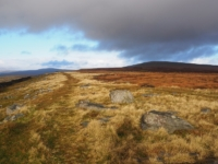 Looking back along the path with Great Whernside to the right