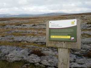 Entering the Ingleborough National Nature Reserve