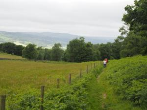 A first view of Nidderdale