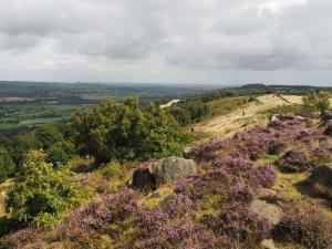 Looking along the crest of Otley Chevin from Surprise View