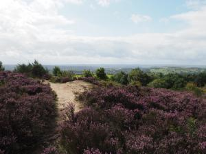 The less interesting summit of Otley Chevin