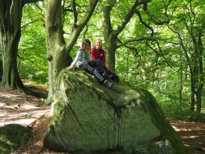 Rhanny and Shannon on one of the rocks in Wilson's Wood