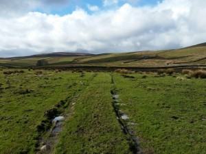 The bridleway from Helm