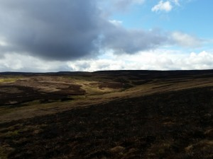 Looking west across the moors towards Lovely Seat