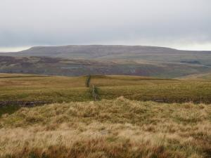 Great Whernside from Parson's Pulpit
