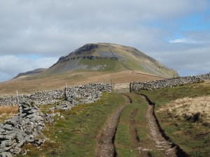 Penyghent from near the top of Long Lane