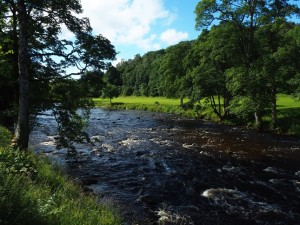 The River Wharfe from Cavendish Bridge