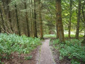 The path from Mirk Pot