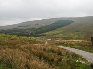 Looking back down to Stone Gill Foot