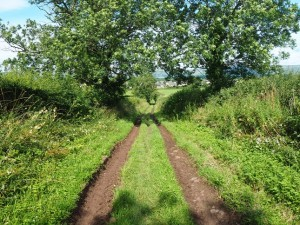 The final track leading back into Appleby