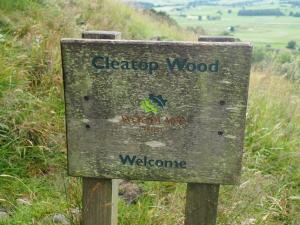 Entering Cleatop Wood