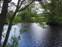 The confluence of Foster Beck and the River Nidd