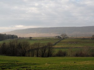 West Fell, part of the long southern ridge of Whernside