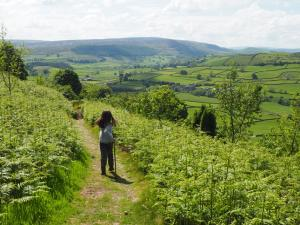 The slanting path leading down to Howgill Lane