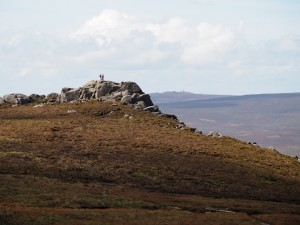 Simon's Seat with Cracoe Fell in the distance