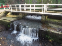 Outflow from Springs Canal dropping into Eller Beck below a footbridge
