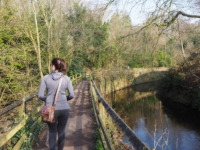 The embankment carrying the path between canal and beck behind Skipton Castle