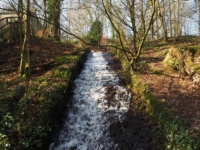 The mill race as we entered Skipton Castle Woods