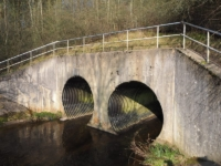 The bridge at the top end of the woods
