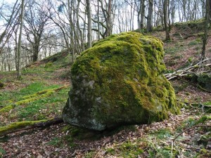 A mossy boulder in Skrikes Wood