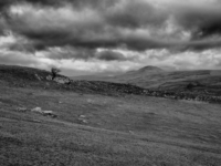 The view up Ribblesdale towards Pen-y-ghent