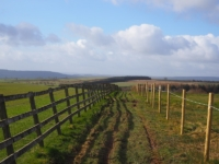 The path going round the outside of Lanshaw Farm
