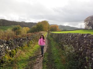 On the Pennine Bridleway heading for Stainforth Force