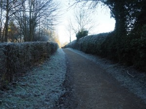 The frosty path leading to the entrance to Studley Park