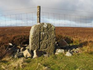 The boundary stone with OS benchmark on the other side of the cattle grid