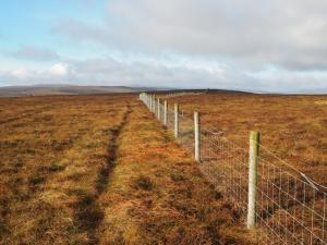 Following the fence to Tarn Seat