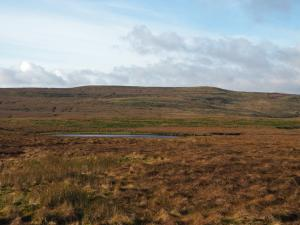 Oxnop Common and Satron Tarn