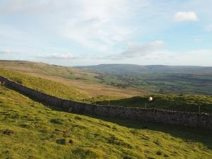 A view of Wensleydale