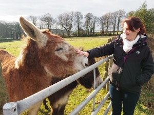 My wife meeting a pair of donkeys